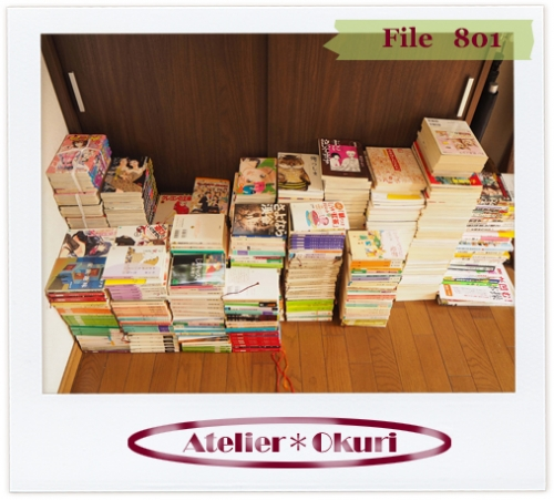 File801a